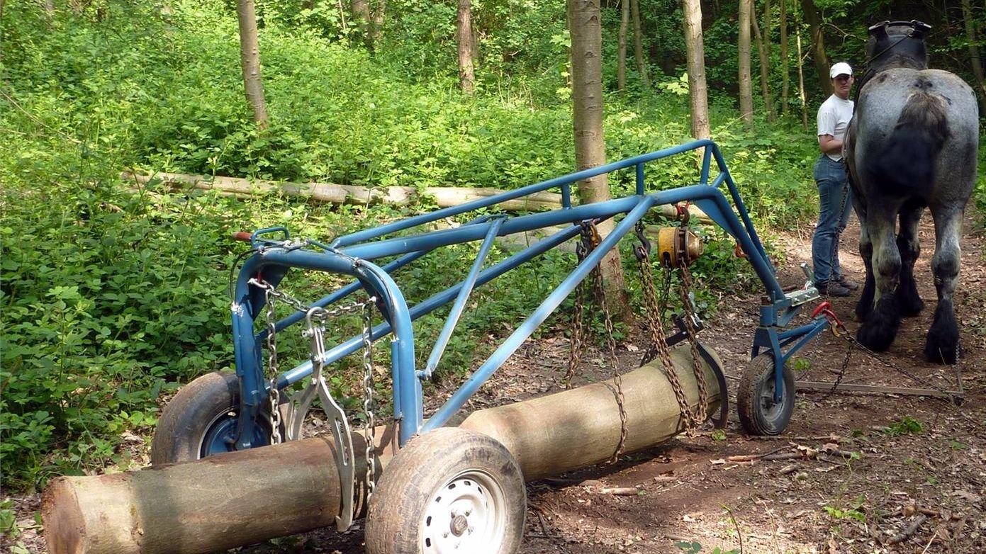 Trinquebale pour tracter les troncs importants