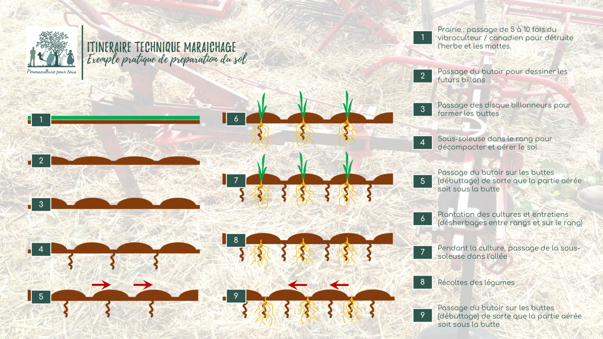 Infographie - itinéraire technique maraîchage en traction animale