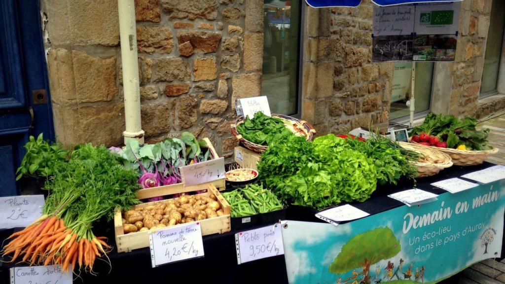 Mon étale au marché d'Auray en juin. J'ai encore à travailler la présentation, l'affichage des prix et le parasol. Je fais déguster au milieu le choux rave peu connu des clients.