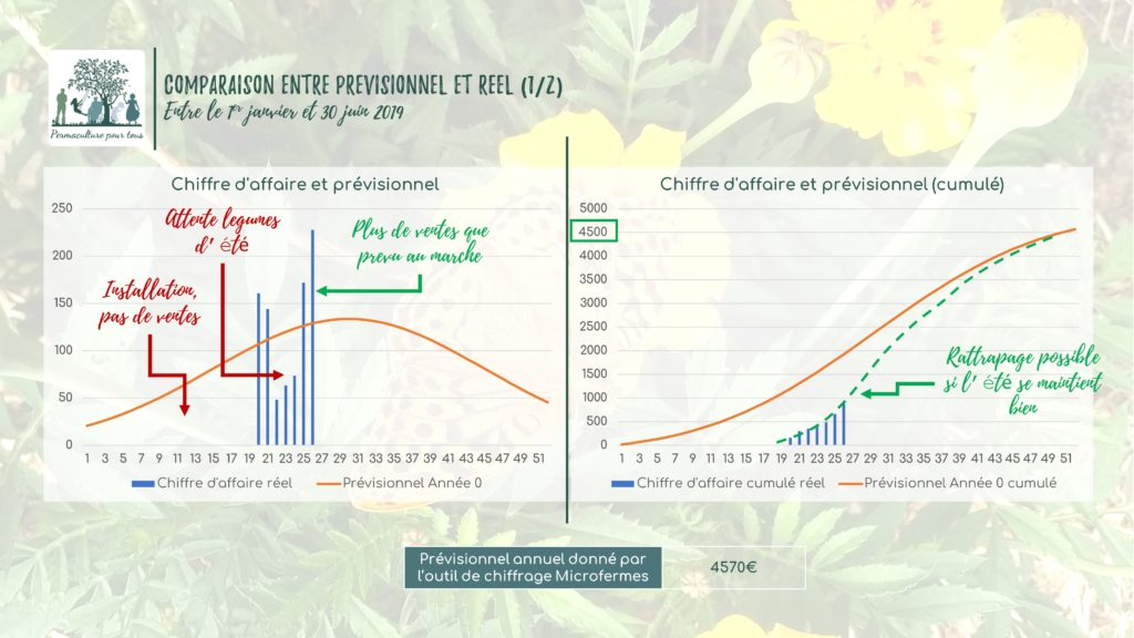 Comparaison entre le prévisionnel et le réel (chiffre d'affaire)