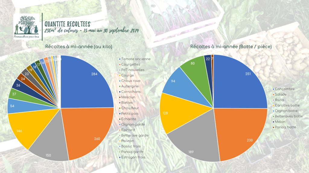 Quantités récoltées au potager entre mai et septembre (au kg et à la pièce)